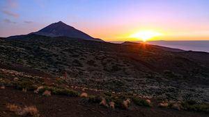 Tenerife busca en FITUR consolidar el buen comportamiento del mercado nacional registrado en 2018