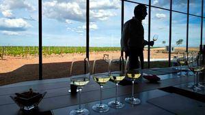 La Ruta del Vino de Rueda, lleva su plan estratégico de comercialización a Fitur