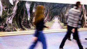 Greenways Heritage, una oportunidad para las vías verdes y el turismo ferroviario