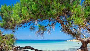 Ikos Resorts, los mejores hoteles todo incluido del mundo por segundo año consecutivo