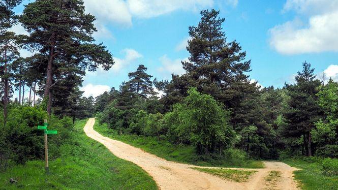 San Zadornil, el Nueva York de los Bosques en la provincia de Burgos