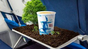 Air France lanza el nuevo programa Trip and Tree