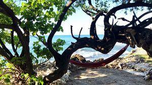 La costa sur de Jamaica esconde los paisajes más insólitos y una exuberante belleza natural