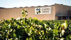 Transformación del sector vitivinícola a través de VinoTEC-Dynamics y la nube de Microsoft