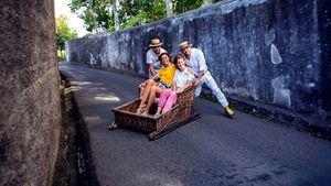 """Carro de trineo """" Carros de Cestos"""