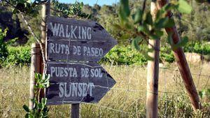 Can Lluc, un hotel para disfrutar en familia de la Ibiza más auténtica