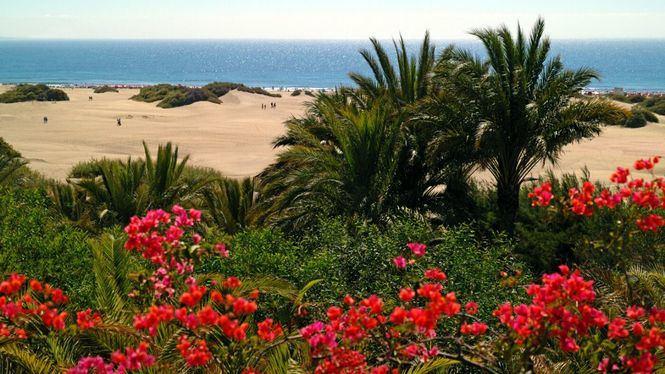 Gran Canaria, la Isla donde los niños sólo tienen prohibido aburrirse