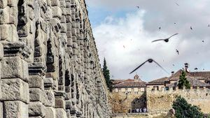 Ruta para descubrir las sorprendentes aves de la ciudad de Segovia