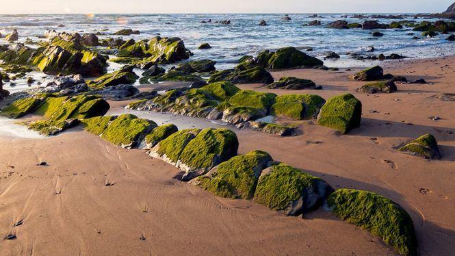 Llega a algunas las playas menos conocidas de España por carretera
