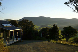 Nueva Zelanda (Isla Sur): Catlins Mohua Park