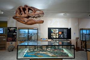 5 experiencias en Burgos para trasladarse a cientos de millones de años atrás