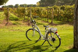 Salir de la ciudad y perderse entre viñedos, plan de primavera en la Ribera del Duero