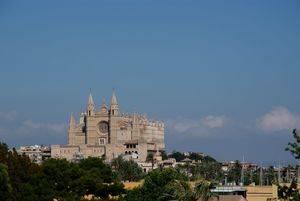 Palma celebra Sant Joan y sus primeras Fiestas de Verano