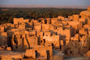 Turismo en las reservas naturales de Egipto