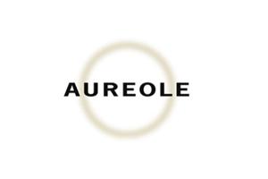 Las Vegas: Restaurante Aureole Las Vegas