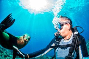 6 mejores lugares del mundo para practicar buceo y snorkel